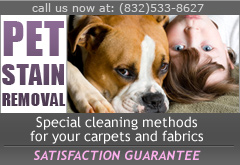 Houston pet stain removal special treatment
